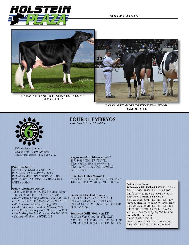 Datasheet for SID x Garay Alexander Destiny
