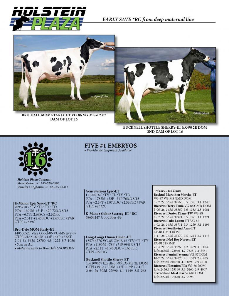 Datasheet for SAVE *RC x Bru-Dale MOM Starly